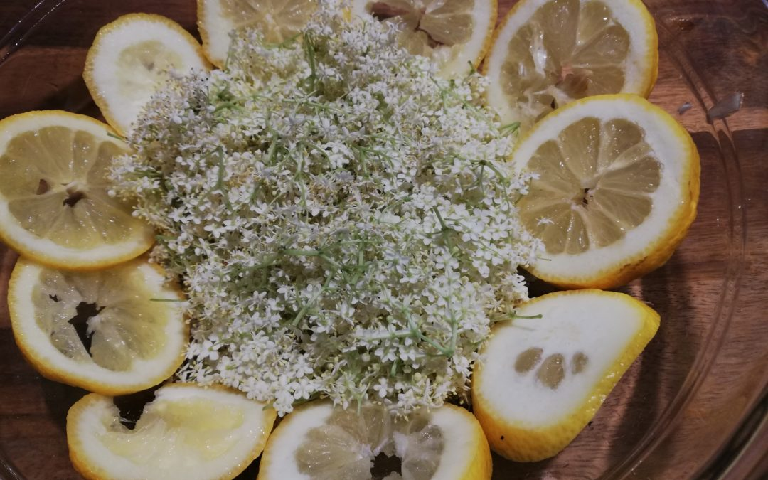 Sirop de fleurs de sureau, respectueusement